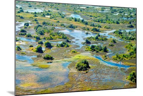 Aerial View of the Spring Floods of the Okavango Delta, Botswana,Africa-Dennis Sabo-Mounted Photographic Print