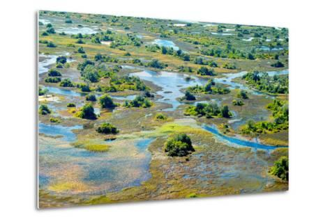 Aerial View of the Spring Floods of the Okavango Delta, Botswana,Africa-Dennis Sabo-Metal Print