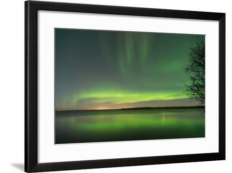 Northern Lights Reflecting in the Water with a Tree Silhouette-Brent Beach-Framed Art Print