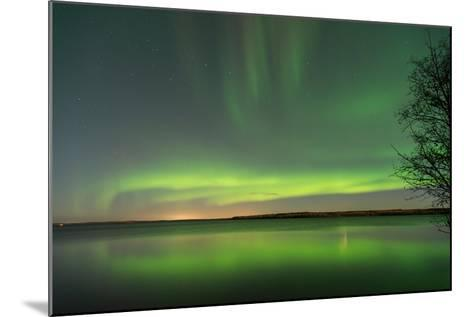 Northern Lights Reflecting in the Water with a Tree Silhouette-Brent Beach-Mounted Photographic Print