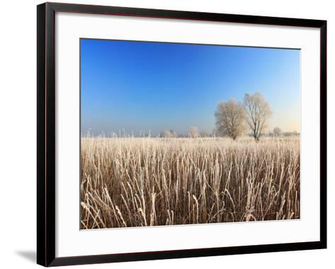 Misty Morning with Frost on the River in Early Spring-Anton Petrus-Framed Art Print