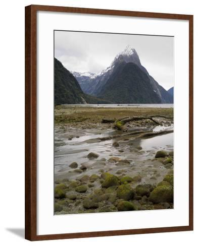 Mitre Peak, Estuary and Bay from Milford Sound; Fiordland National Park, New Zealand-Timothy Mulholland-Framed Art Print