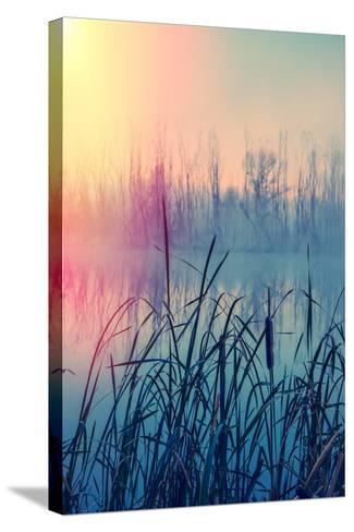 Misty Autumn Morning on the River, Rural Landscape-Andriy Solovyov-Stretched Canvas Print