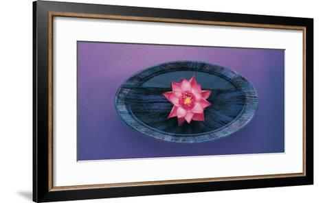 Pink Lotus Flower in Bowl, India, Asia- Dinodia Photos-Framed Art Print