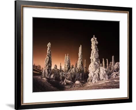 Orange Finnish Winter Forest-Nickolay Loginov-Framed Art Print