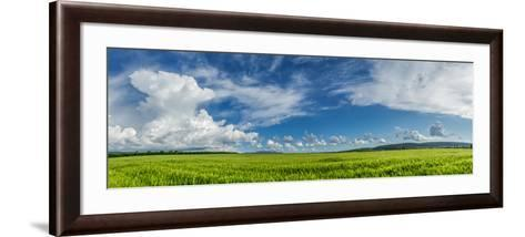 Panorama Ripening Wheat Field-Gennadiy Iotkovskiy-Framed Art Print