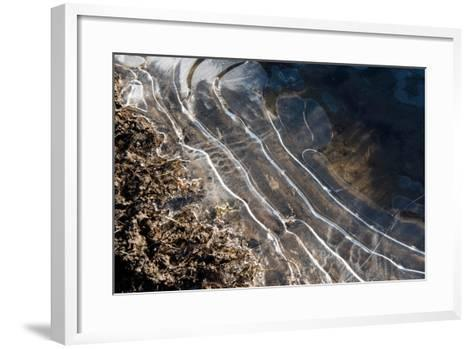 Puddles in Deep Tractor Ruts Frozen on a Cold Bright Winter Morning in January, West Berkshire-Nigel Cattlin-Framed Art Print