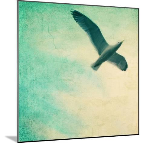 Close-Up of a Gull Flying in a Texturized Sky-Trigger Image-Mounted Photographic Print