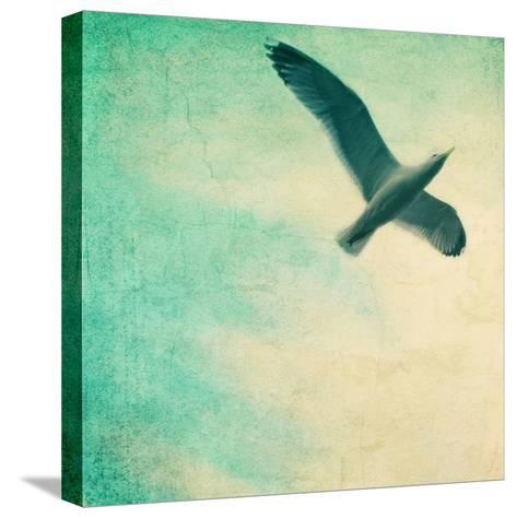 Close-Up of a Gull Flying in a Texturized Sky-Trigger Image-Stretched Canvas Print
