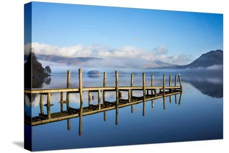 Gull on High Brandelhow Jetty, Derwentwater, the Lake District National Park, England-Tony Allaker-Stretched Canvas Print