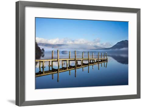 Gull on High Brandelhow Jetty, Derwentwater, the Lake District National Park, England-Tony Allaker-Framed Art Print