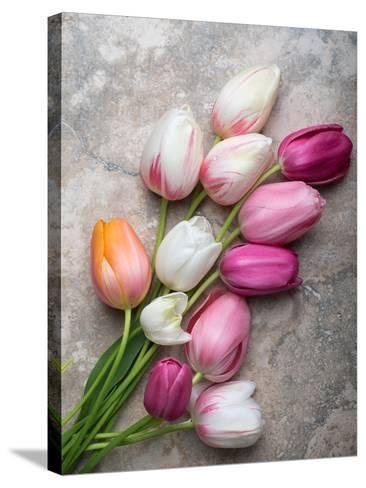 French Tulips on Stone Table-Georgianna Lane-Stretched Canvas Print