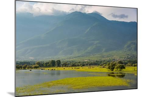 View of Kerkini Lake at Sunset in Greece-dinosmichail-Mounted Photographic Print