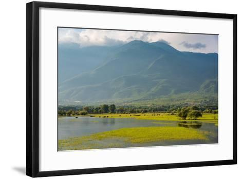 View of Kerkini Lake at Sunset in Greece-dinosmichail-Framed Art Print
