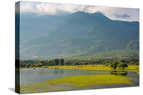 View of Kerkini Lake at Sunset in Greece-dinosmichail-Stretched Canvas Print