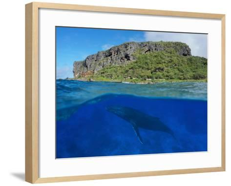 Split View Above and Below Sea Surface, Coastal Cliff with a Humpback Whale, Rurutu Island-Seaphotoart-Framed Art Print