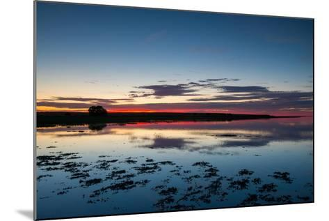 Sunset Blue Hour on the Causeway on Holy Island, Northumberland England UK-Tracey Whitefoot-Mounted Photographic Print