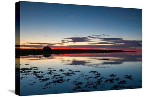 Sunset Blue Hour on the Causeway on Holy Island, Northumberland England UK-Tracey Whitefoot-Stretched Canvas Print