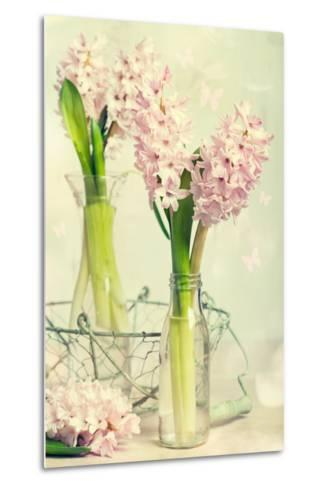 Spring Hyacinth Flowers in Vintage Glass Bottles-Amd Images-Metal Print