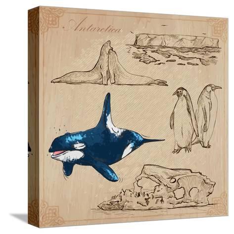 Travel Series: Polar Regions - Antarctica-KUCO-Stretched Canvas Print