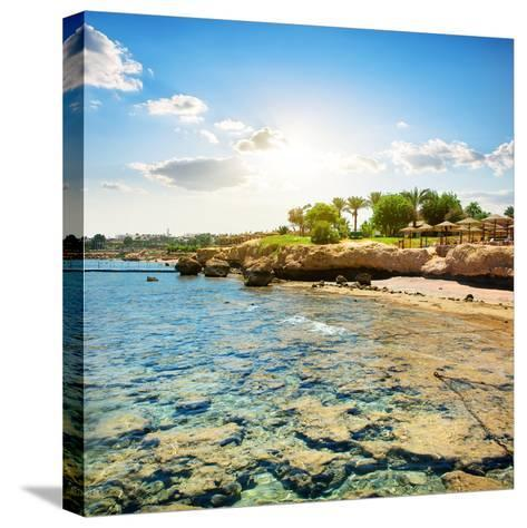 Coral Reefs on the Beach Near Hotel- Givaga-Stretched Canvas Print