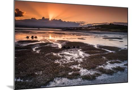 Northam Burrows Daybreak-Terry Mathews-Mounted Photographic Print