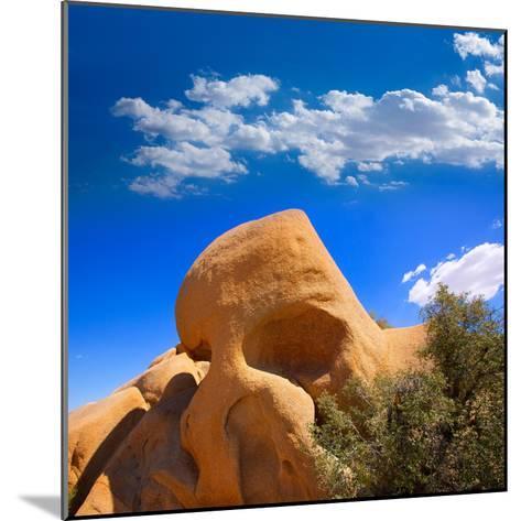 Skull Rock in Joshua Tree National Park Mohave California-Lunamarina-Mounted Photographic Print