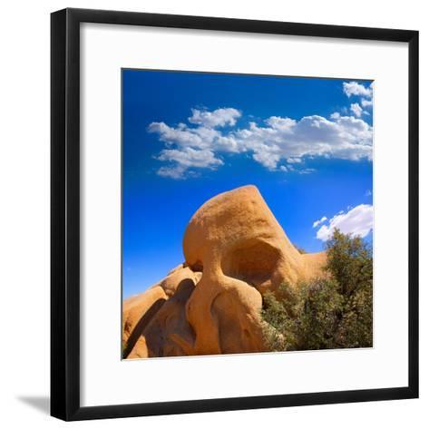 Skull Rock in Joshua Tree National Park Mohave California-Lunamarina-Framed Art Print