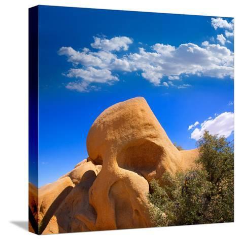 Skull Rock in Joshua Tree National Park Mohave California-Lunamarina-Stretched Canvas Print