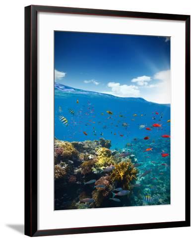 Underwater Coral Reef with Horizon and Water Waves-Jakub Gojda-Framed Art Print