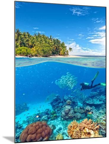 Underwater Photography with Tropical Island-Jakub Gojda-Mounted Photographic Print