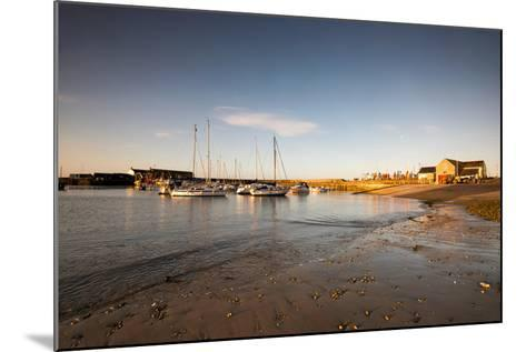 Sunrise in Lyme Regis, Dorset England UK-Tracey Whitefoot-Mounted Photographic Print