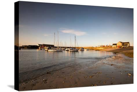 Sunrise in Lyme Regis, Dorset England UK-Tracey Whitefoot-Stretched Canvas Print