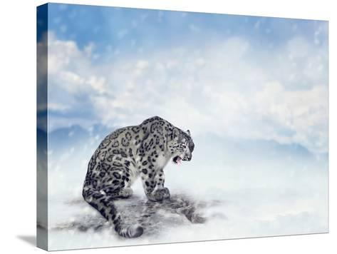 Snow Leopard Sitting on the Rock-Svetlana Foote-Stretched Canvas Print