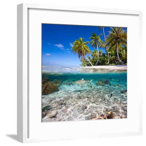 Tropical Island under and Above Water- Blueorangestudio-Framed Art Print