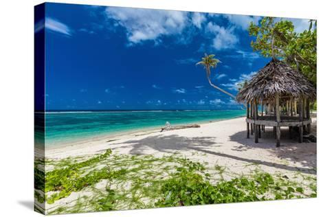 Tropical Vibrant Natural Beach on Samoa Island with Palm Tree and Fale-Martin Valigursky-Stretched Canvas Print