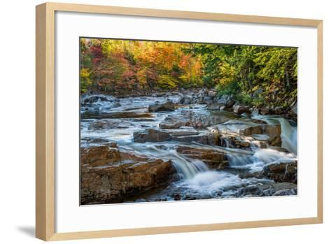 Water Plunges over the Falls on the Swift River at Rocky Gorge, White Mountain National Forest, Nh-Robert K. Olejniczak-Framed Art Print