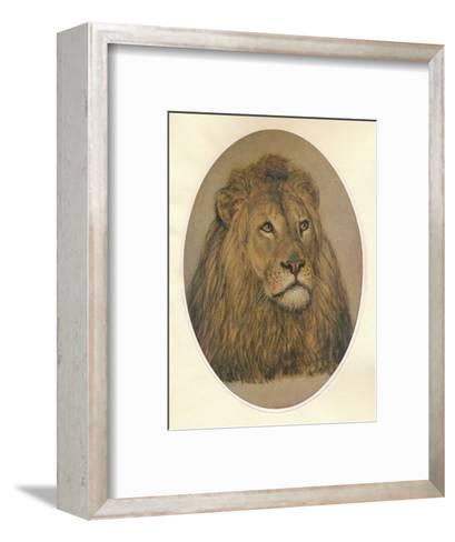 Lions Head, c1896-Frank Paton-Framed Art Print