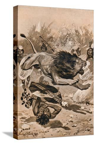 As The Lion Charged, 1902, (1903)-Stanley Llewellyn Wood-Stretched Canvas Print