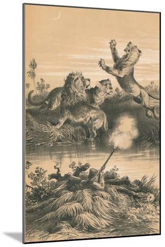 Lion Hunting At Night, c1880--Mounted Giclee Print