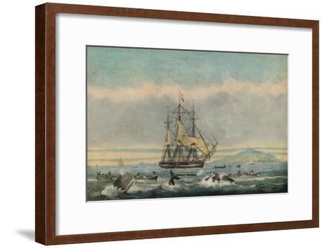 South Sea Whale Fishery, 1825-Thomas Sutherland-Framed Art Print