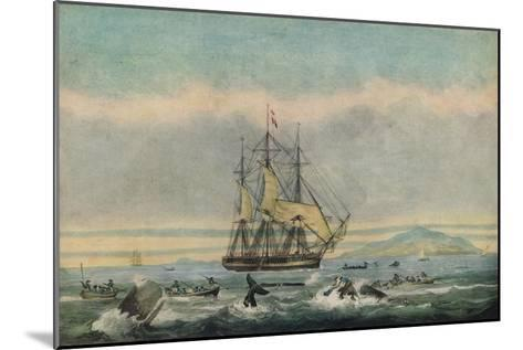 South Sea Whale Fishery, 1825-Thomas Sutherland-Mounted Giclee Print