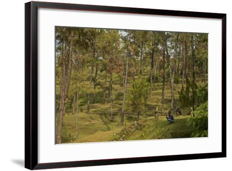 A Goat Herder with Goat in an Uttarakhand Village with Leopard Conflict Problems-Steve Winter-Framed Art Print