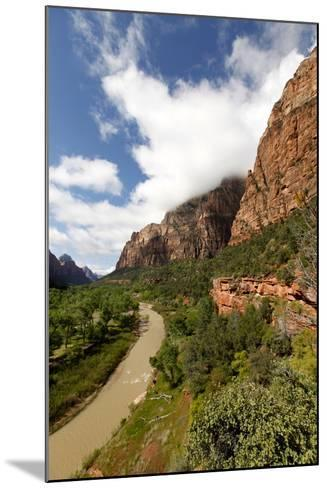 View of the Virgin River Through Zion Canyon in Utah, USA-Jill Schneider-Mounted Photographic Print