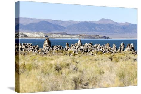 View of the Tufa Towers at Mono Lake-Jill Schneider-Stretched Canvas Print