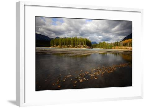 Autumn Leaves Floating on Athabasca River in Alberta, Canada-Raul Touzon-Framed Art Print