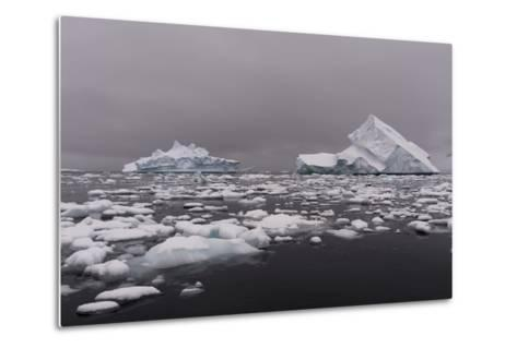 Icebergs in Portal Point, Antarctica-Sergio Pitamitz-Metal Print