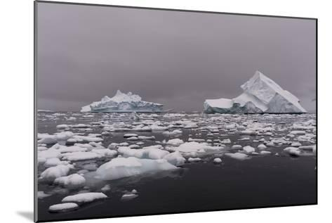 Icebergs in Portal Point, Antarctica-Sergio Pitamitz-Mounted Photographic Print