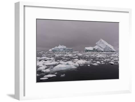 Icebergs in Portal Point, Antarctica-Sergio Pitamitz-Framed Art Print