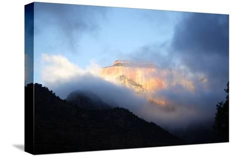 Sunrise in Zion National Park, Utah, USA-Jill Schneider-Stretched Canvas Print